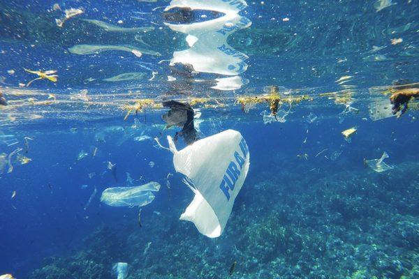Proteggiamo il mare